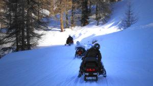 La Randonnée Motoneige emprunte des sentiers enneigés